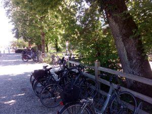 Der Fahrradparkplatz am Biergarten Kugler Alm